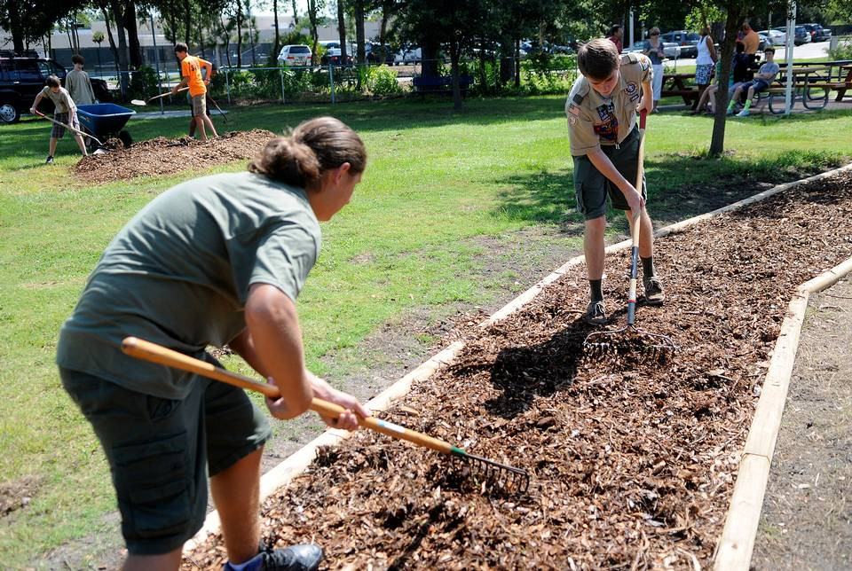 Boy Scout Mulch Products
